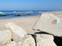 לאורך שביל ישראל