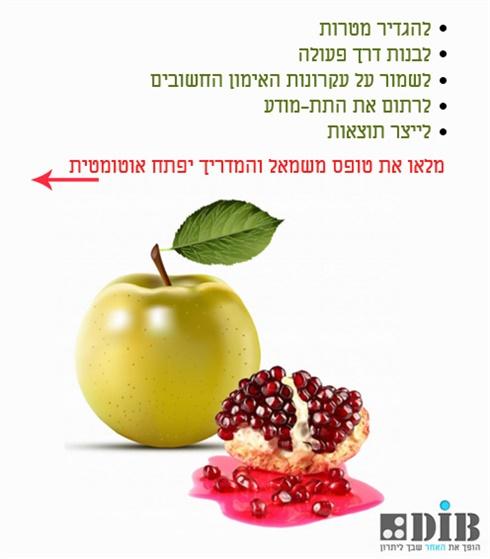 אימון בשיטת תפוח - תשוקה, פעולות, ויז'ן, חזון