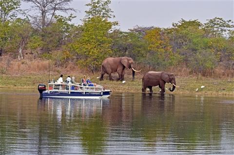""""""" לובנגולו מלך זולו"""" מסע שייט על נהר הזמבזי בין זמביה לזימבבואה"""
